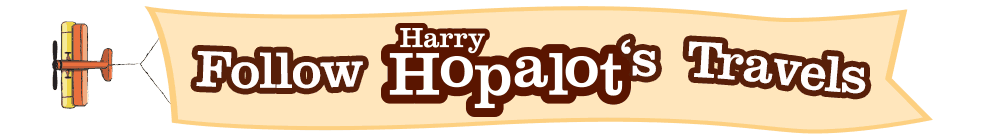 HarryPlaneBanner