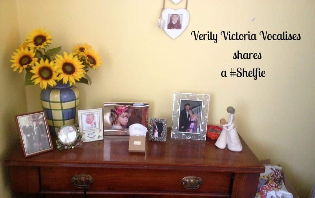 Take a Look at My Shelfie!