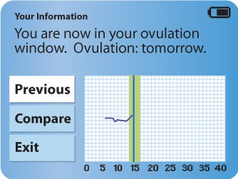 5.-You-Are-In-Now-In-Your-Ovulation-Window---Ovulation-Tomorrow