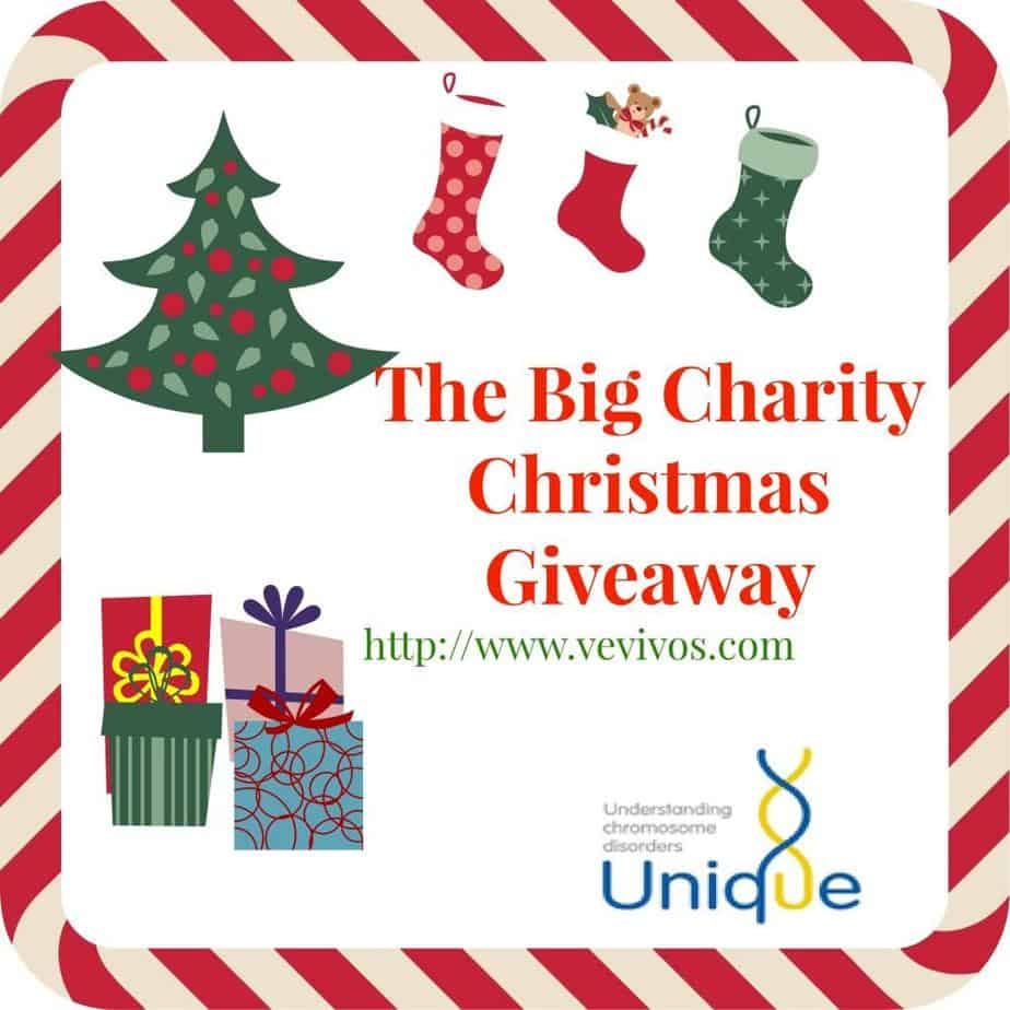 The Big Charity Christmas Giveaway: A Childs Picnic Bundle from Tendre Deal