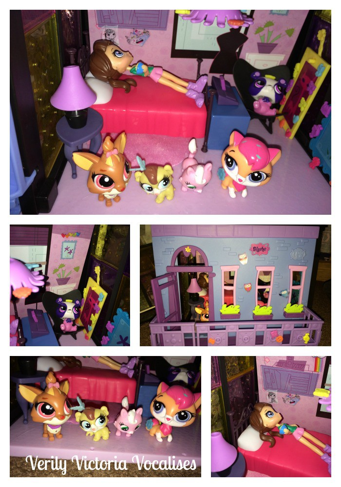 Loving the Littlest Pet Shop. A Perfect Christmas Gift.