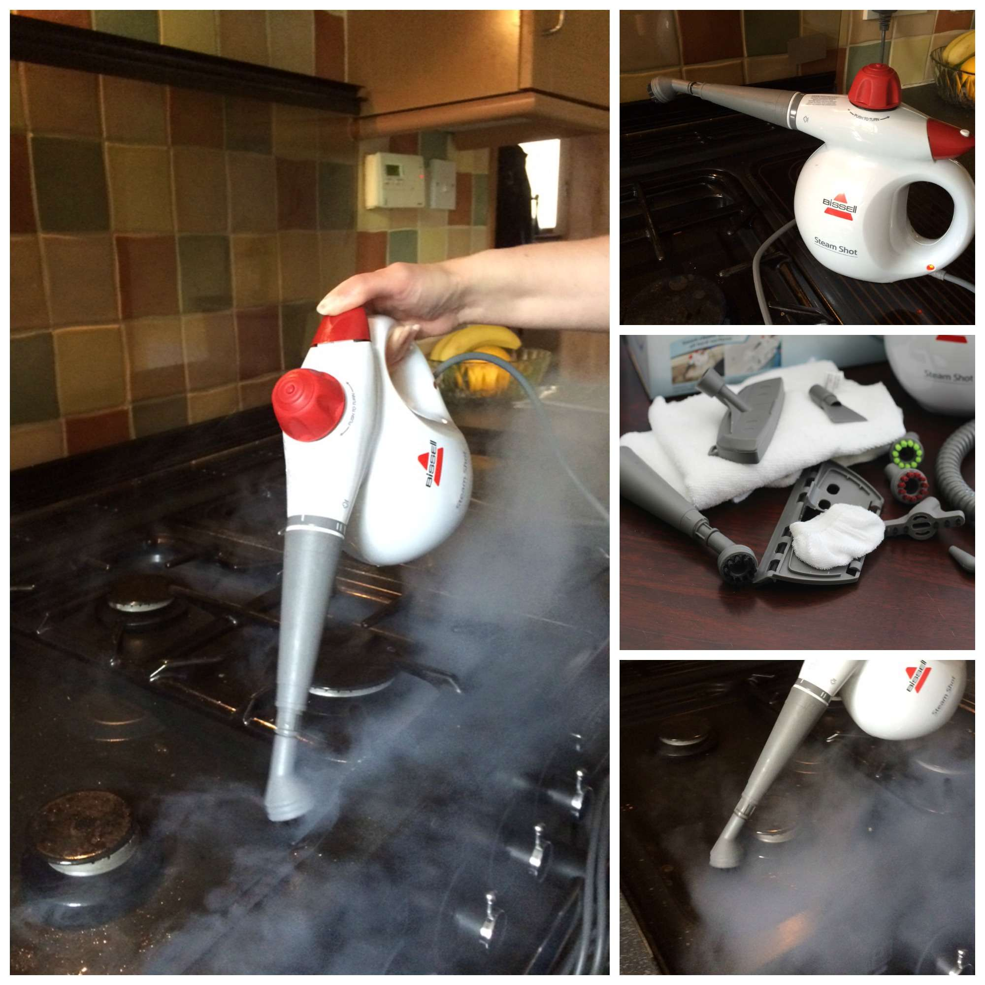 A Review Of The Bissell Steam Shot Verily Victoria Vocalises