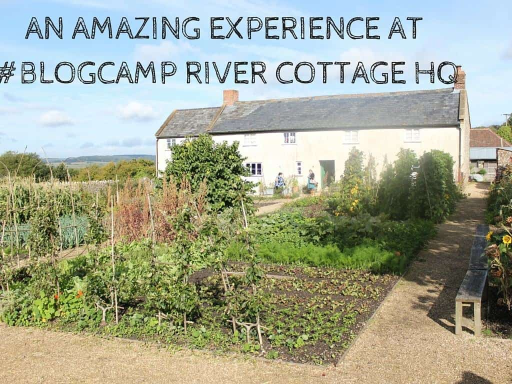 An Amazing Experience at  #BlogCamp River Cottage HQ