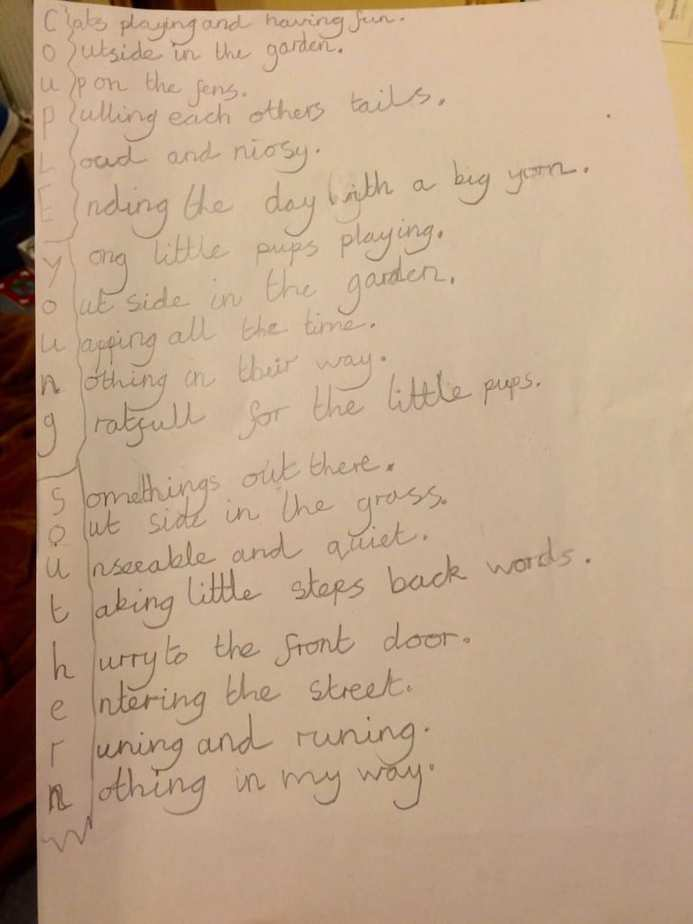 3 Acrostic Poems from Grace.
