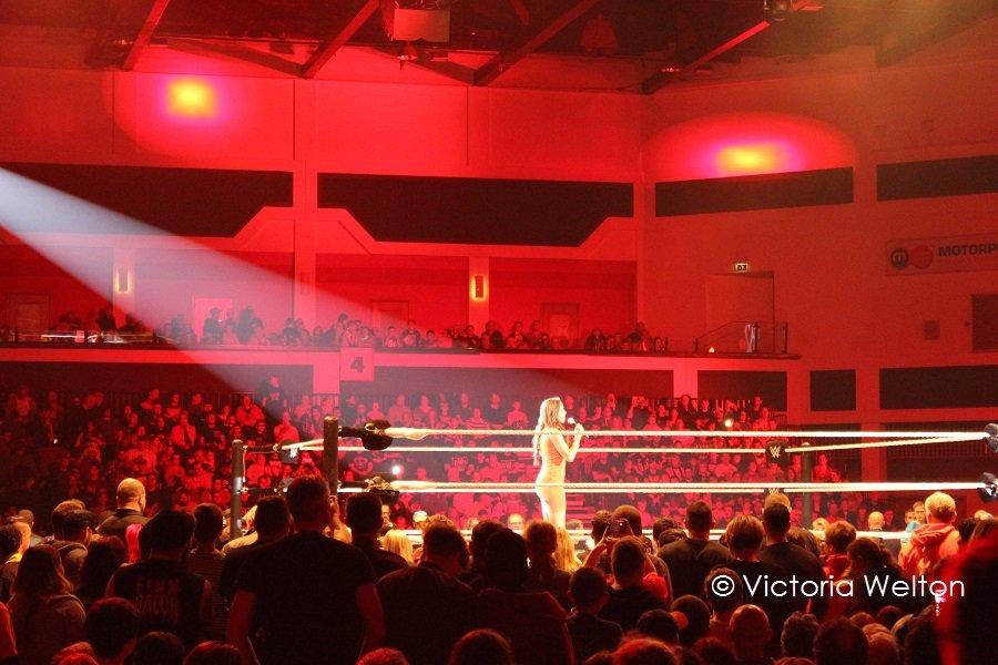 WWE Cardiff November 2015