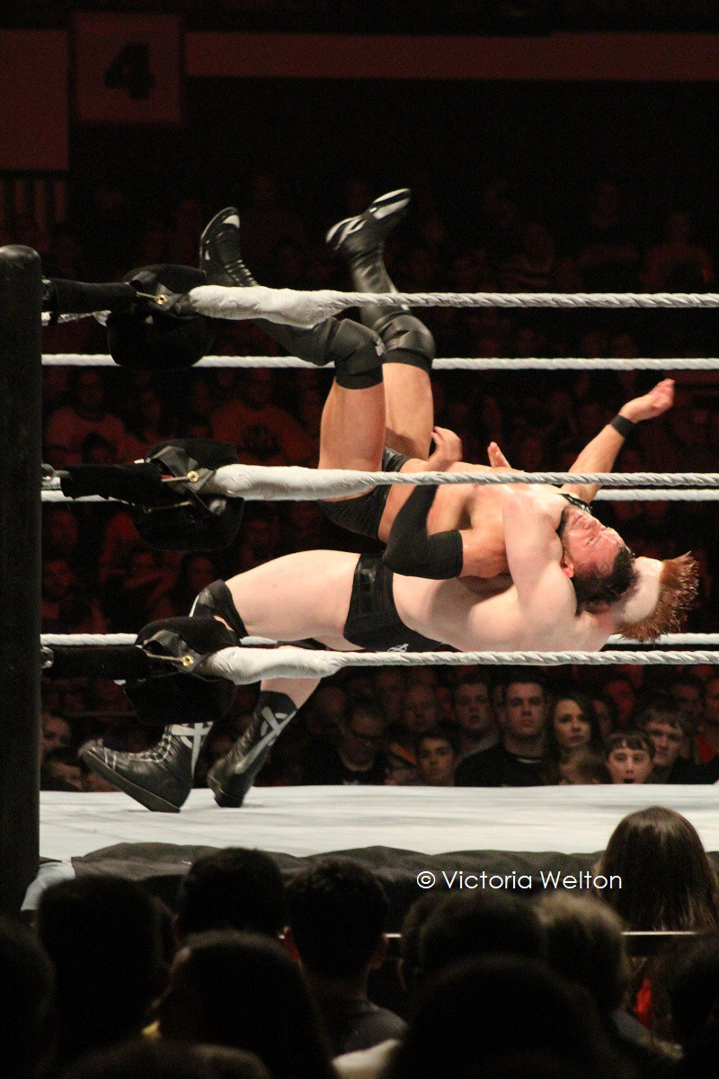 WWE Cardiff November 2015 Finn Balor versus Sheamus