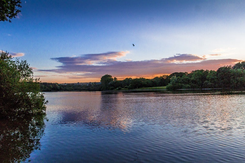 Chard Reservoir – A Poem