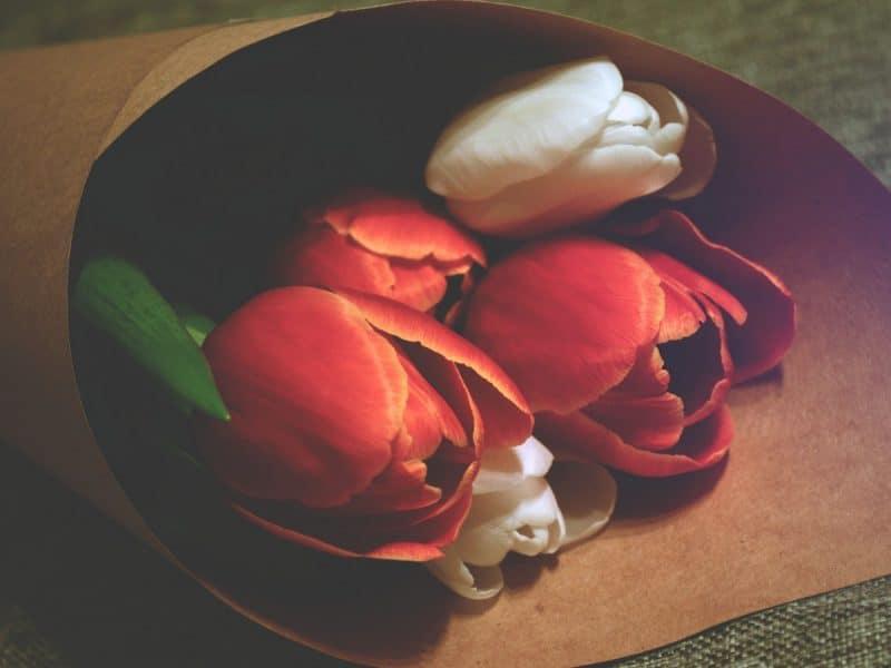 A Lost Love #SummerLove16