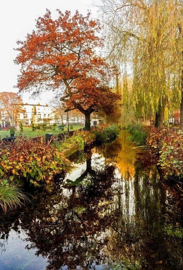 Reflections of Autumn. #MySundayPhoto