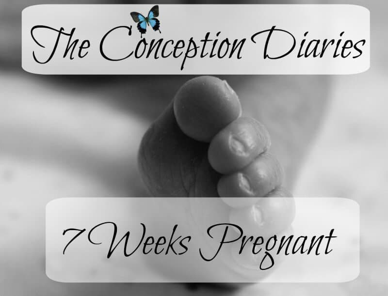 The Conception Diaries – Friday 2nd December and 7 Weeks Pregnant