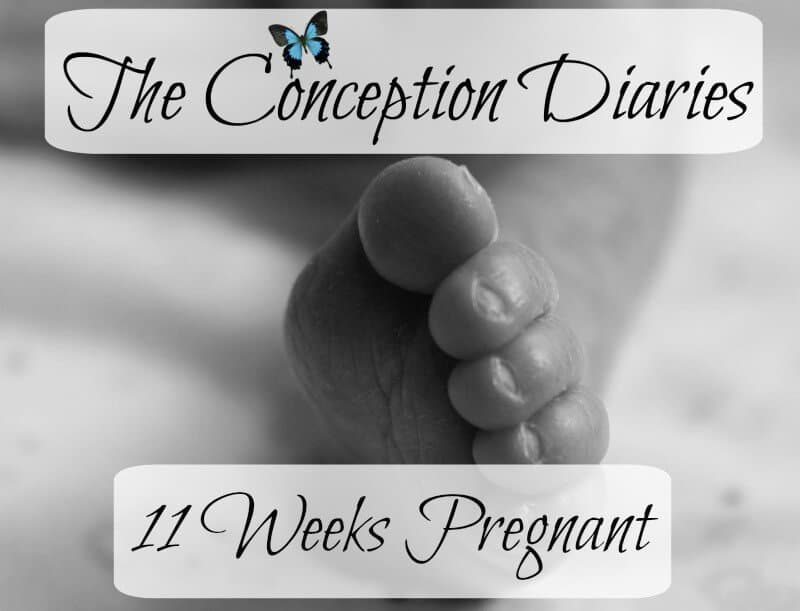 The Conception Diaries – Friday 30th December and 11 Weeks Pregnant