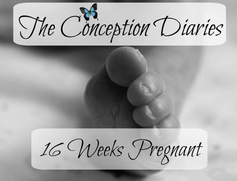 The Conception Diaries – Friday 3rd February and 16 Weeks Pregnant