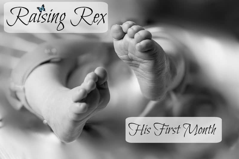 Raising Rex – His First Month