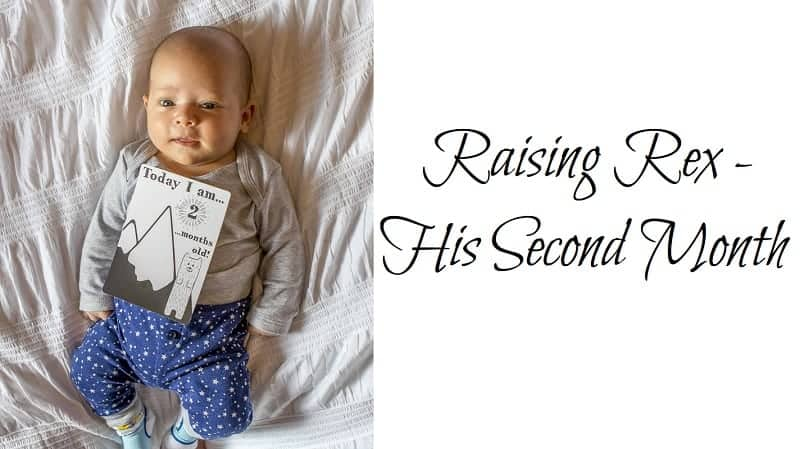 Raising Rex – His Second Month