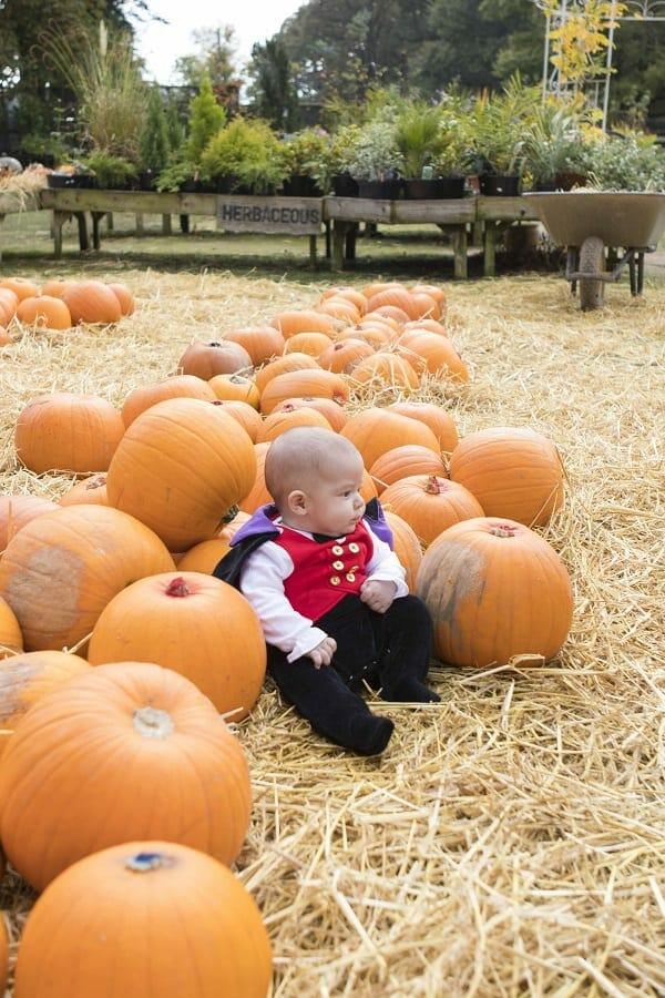 A Visit to Bailey Ridge Pumpkin Patch