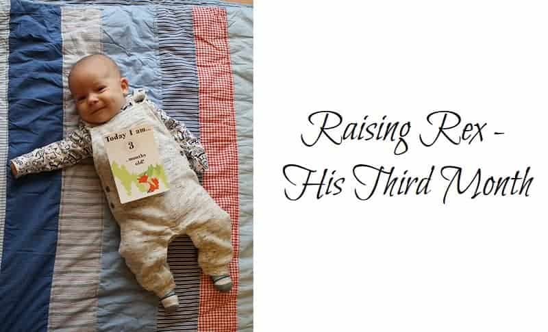 Raising Rex – His Third Month