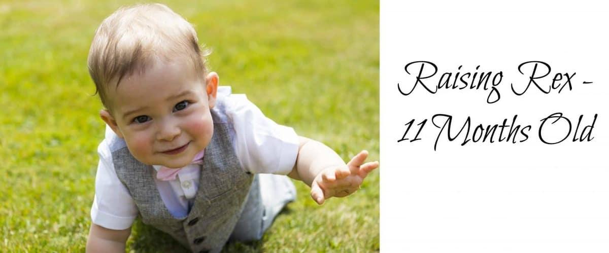 Raising Rex – 11 Months Old